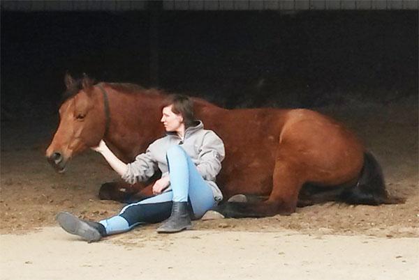 Paardenfeest.com