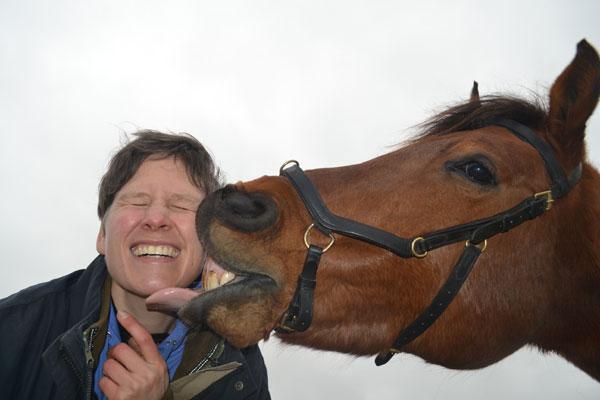 Wet van aantrekkingskracht voor paard en ruiter