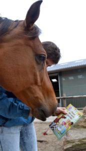 Boekbespreking Choco het Minipaardje
