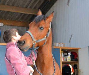 Contact-met-paard