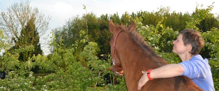 Luisteren naar je paard, niet altijd makkelijk, wel super belangrijk!