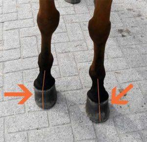 Scheve hoeven paard