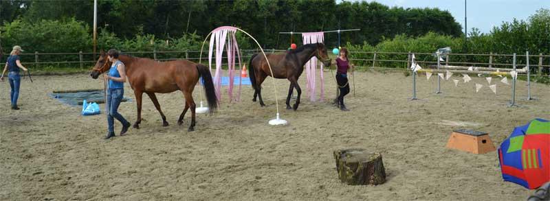 Workshops schriktraining voor een betere band met je paard