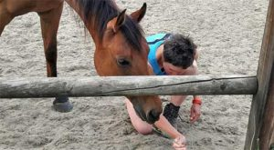 Body Awareness met paard