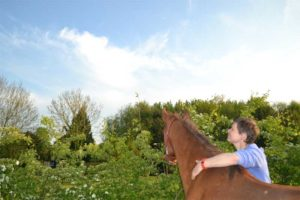 Samen zijn met je paard