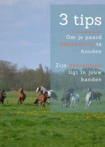 3 tips paard blessurevrij