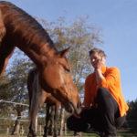 Ontspannen met je paard - nieuwsgierig