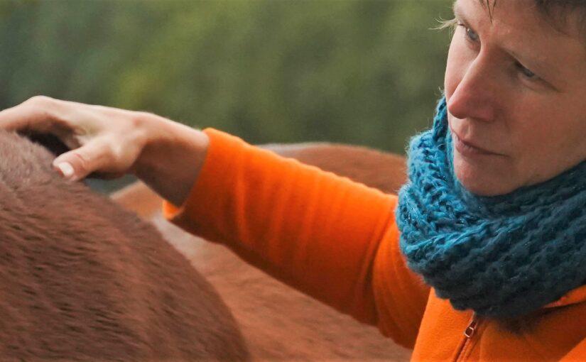 Onzeker paard helpen