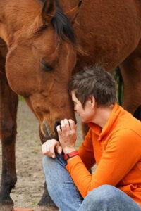 liefde paard en mens