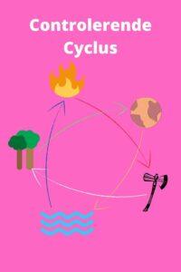 Paarden Karaktertypes Uitleg Controlerende Cyclus