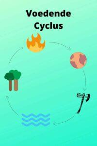 Paarden Karaktertypes Uitleg Voedende Cyclus