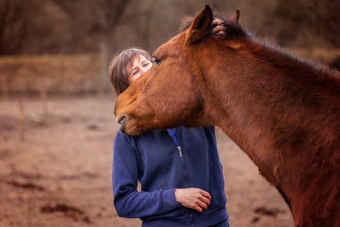Pubergedrag paard herkennen